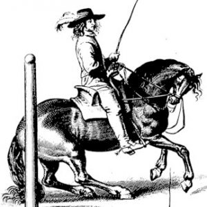 picture of 18th century English saddle