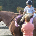 Featured Horse Farms and Stables on the East Coast