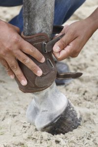 Horse leg protection covering the fetlock, or ankle