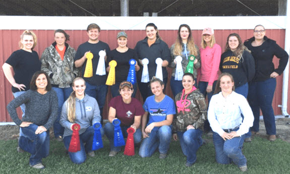 Best Equine Studies Colleges Discover Martin Community