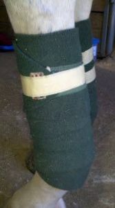 Polo wraps are commonly used for lower leg protection