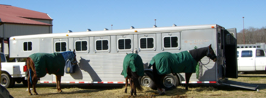 New and Used Horse Trailer East Coast Sales