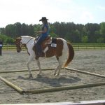 riding a trail pattern at a horse show