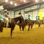 Horse show Western Pleasure lineup
